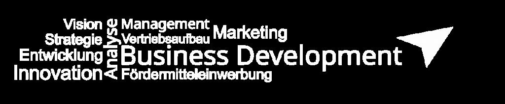 Fördermitteleinwerbung, Geschäftsanalyse, Geschäftsmodellentwicklung, Marktrecherchen, Vertrieb, Werbekonzeption, Zielgruppenanalyse